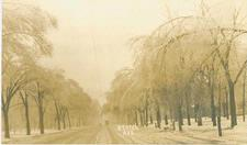 An undated Local History postcard of Benton Avenue during an ice storm.